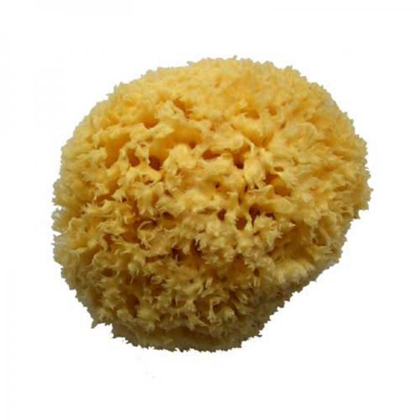 Natural Sea Sponge 140